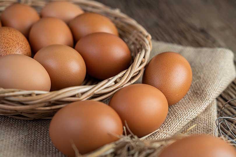 Awas! Bahaya Konsumsi Telur Infertil Bagi Kesehatan