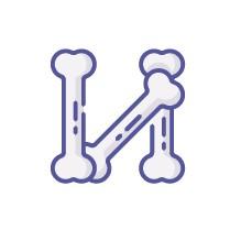 ikon tulang