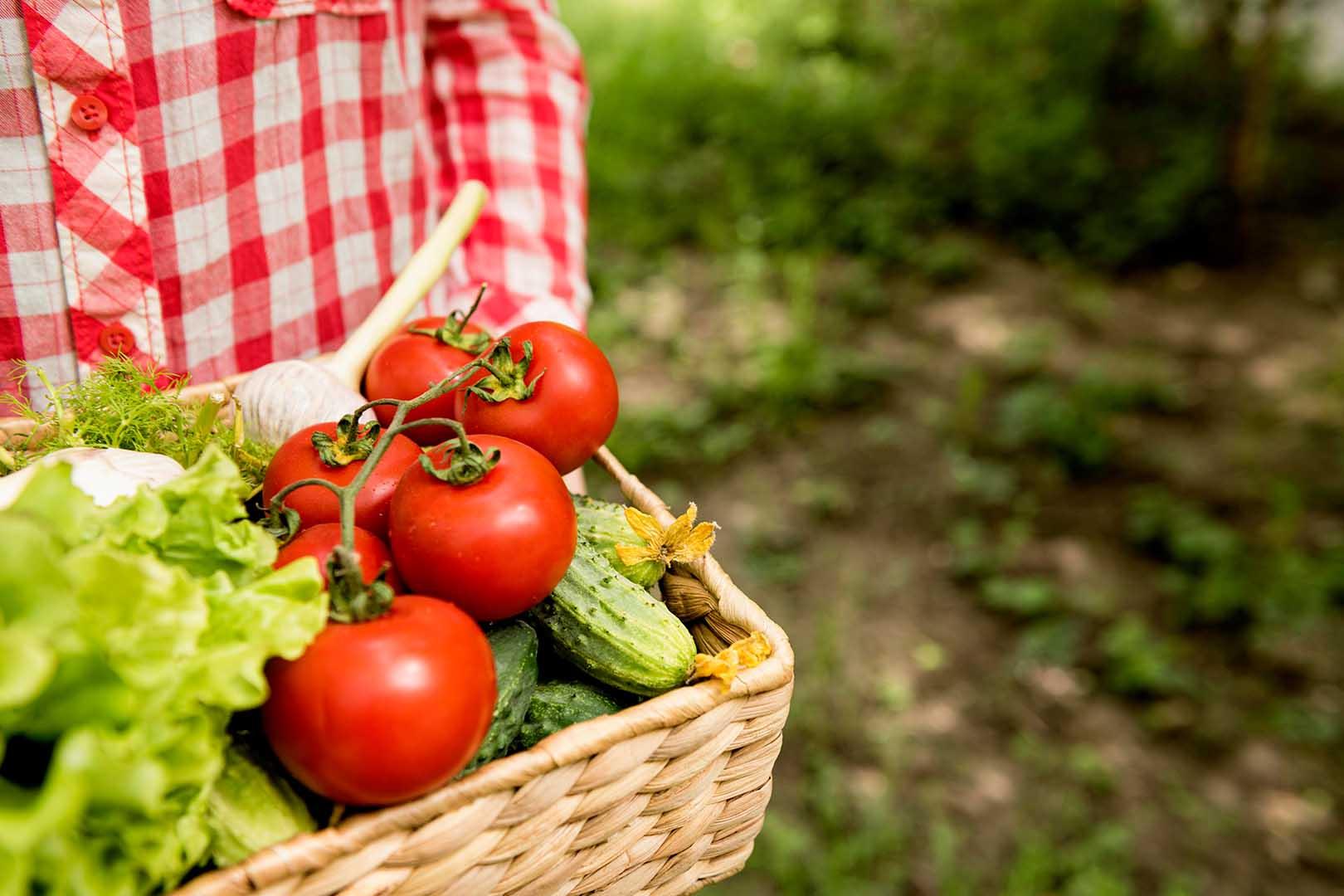 Cegah Defisiensi Vitamin C dengan Konsumsi Buah dan Sayur Ini