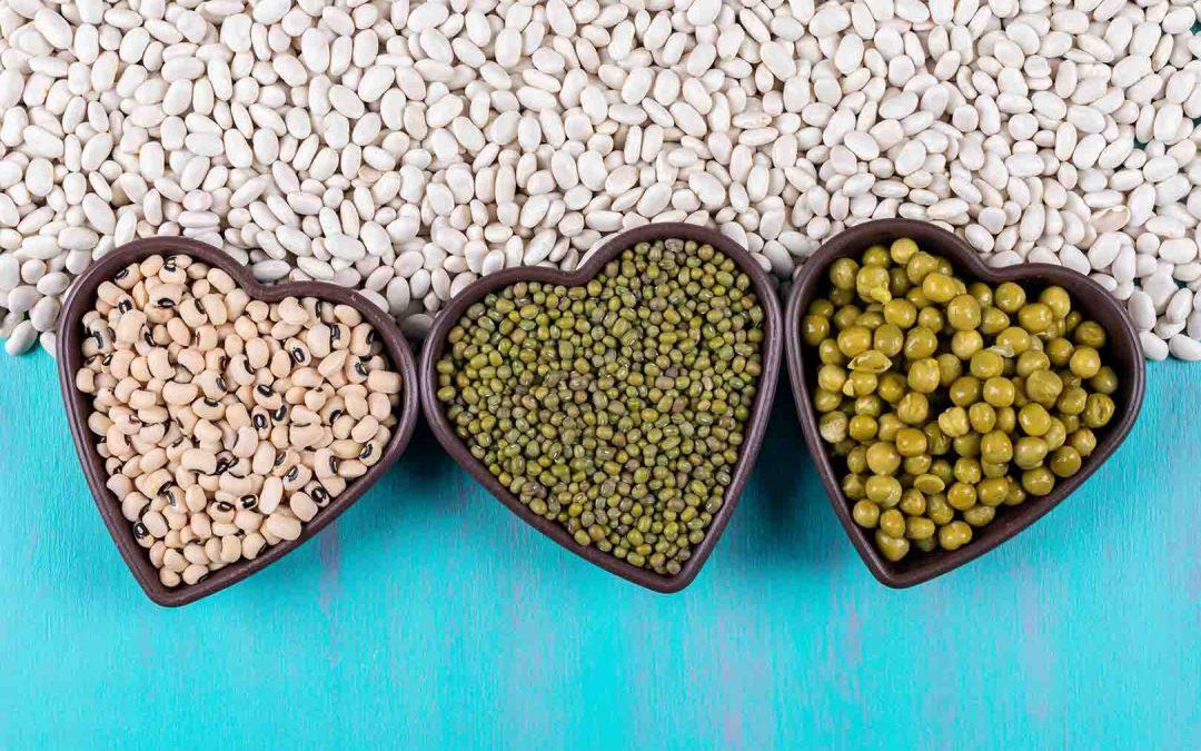 Kandungan Dan Khasiat Kacang Hijau Untuk Ibu Hamil Jovee Id