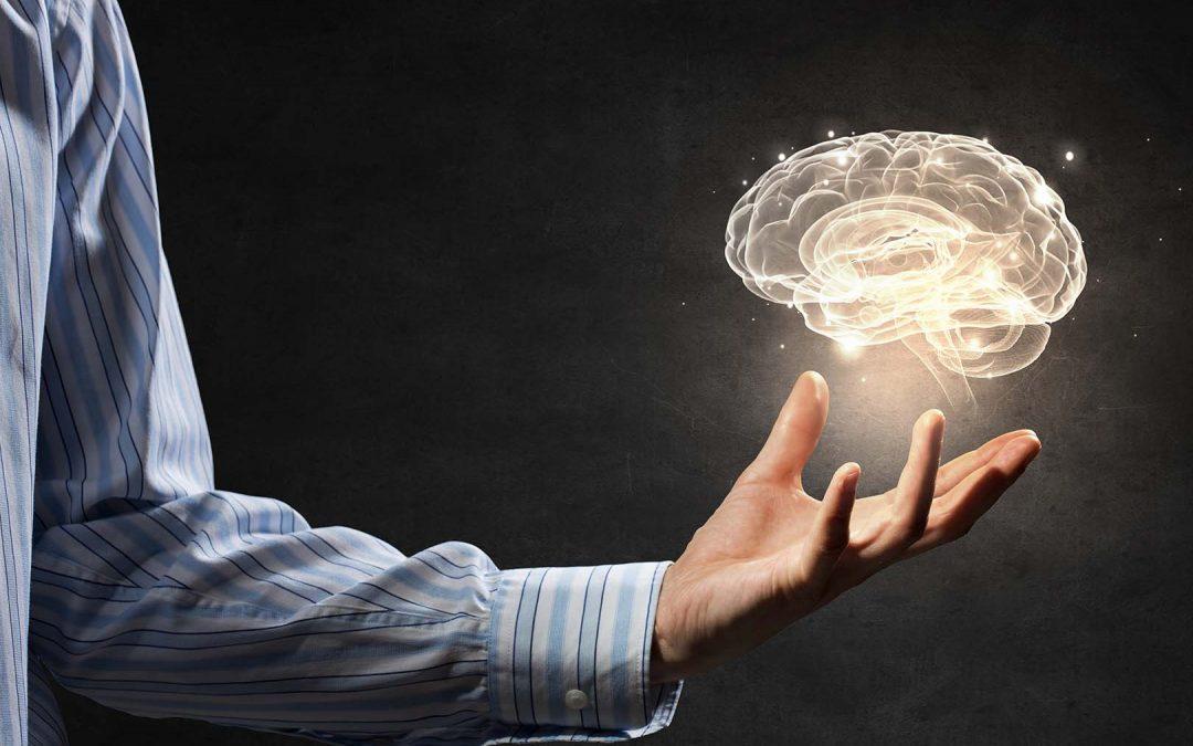12 Cara Meningkatkan Daya Ingat dan Konsentrasi