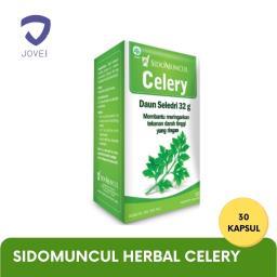 sidomuncul-herbal-celery