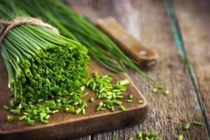 manfaat-sayuran-kucai